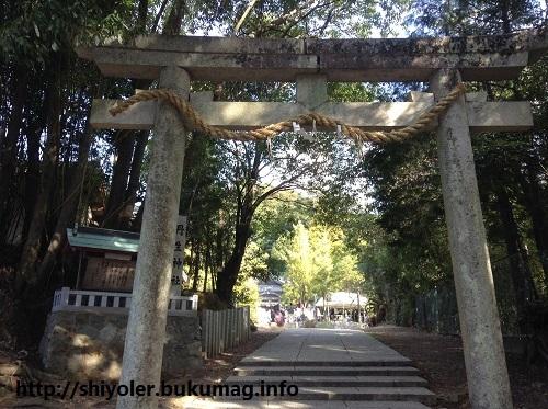 丹生神社,初詣,初笑い,鈴振りさん,和歌山県,日高川町,奇祭