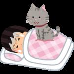 猫が起こしてくれる